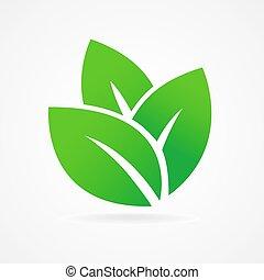 Öko-Ikonengrünes Blatt.