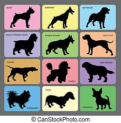 1, silhouetten, hund