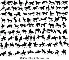 100 Pferde