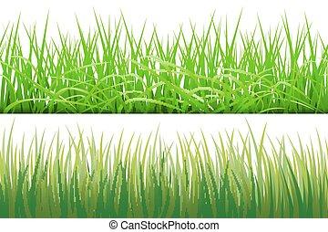 2 Hintergründe von grünem Gras, isoliert auf weißem Hintergrund, Vektorgrafik.