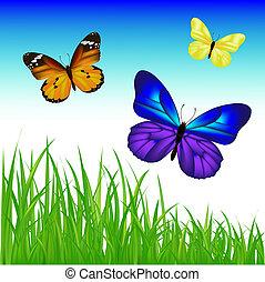 2 Schmetterlinge und Greengrassset