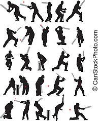 25 Detail Cricket posiert Silhouette.