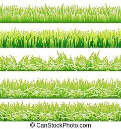 5 Hintergründe von grünem Gras, isoliert auf weißem Hintergrund, Vektorgrafik.
