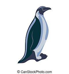 abbildung, penguin., hintergrund., freigestellt, weißes, vektor