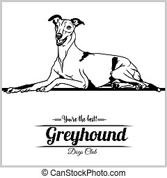 abbildung, vektor, hund, t-shirt, windhund, abzeichen, logo, -, schablone