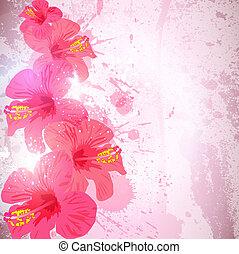 Absperrung tropischer Hintergrund. Hibiscus-Blume zum Design.
