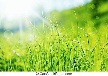 Abstrakter Frühlingscharakter