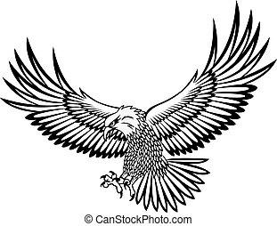 Adlervektor
