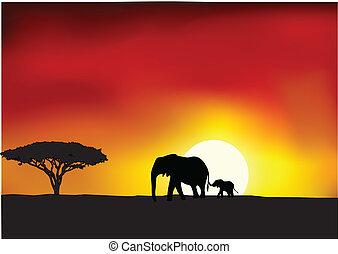 Afrika Sonnenuntergang