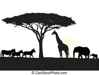 Afrikas Silhouette-Hintergrund