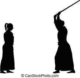 Aikido-Kampfkunst.