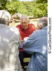 Aktive Senioren, eine Gruppe alter Freunde, die Karten im Park spielen
