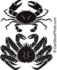 alaskisch, koenig, vektor, crab., illustrations.
