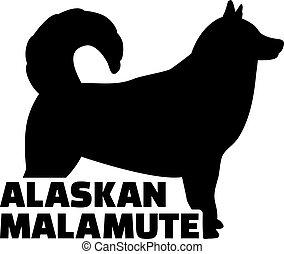 alaskisch malamute, silhouette, wort, echte