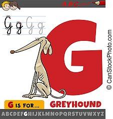 alphabet, karikatur, windhund, buchstabe g, hund