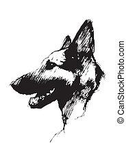 Alsatische Hundepost