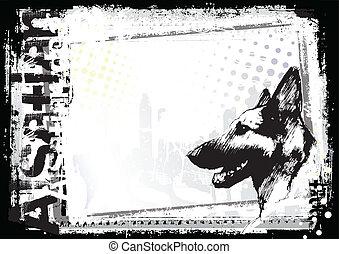 Alsatischer Hunderückgang