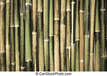 Alte Bambusspülung