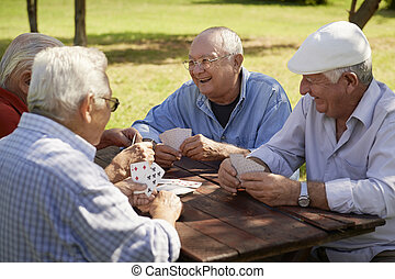 altes , ältere, park, aktive, karten, clique, spielende