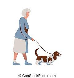 altes , farben, pensionäre, frau, brauner, basset, activity., älter, gehen, senioren, weißes, dog., freigestellt, leash., abbildung, blaues, cane., hut, vektor, dame