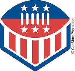 American -Fußball-Flag-CREST.