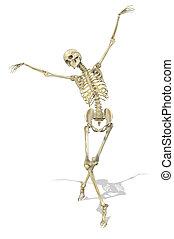 anmutig, haltung, skelett, nimmt