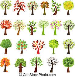 Ansammlung von Bäumen