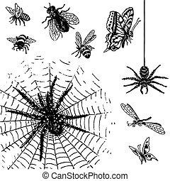 Antike Insekten gesetzt (vektor)
