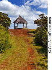 """Arbor am Ende der Straße. Park """"Black River Schlucht"""". Mauritius"""