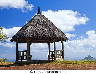 """Arbor im Wald, Park """" schwarzer Fluss Schlucht """". Mauritius rote Erde"""