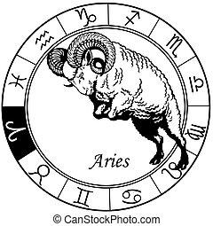 Aries zodiac schwarzweiß.