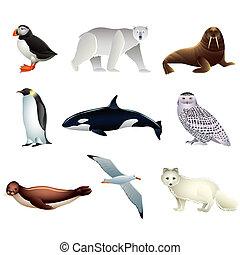 arktische Tiere, Vektor eingestellt.