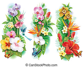 Arrangement von tropischen Blumen und Blättern