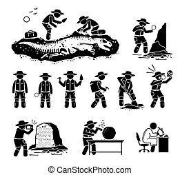 artefakt, fossil, uralt, paleontologist, illustrations., graben, dinosaurierer, entdecken, knochen, wissenschaftler