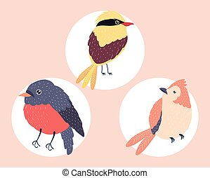 arten, drei, vögel
