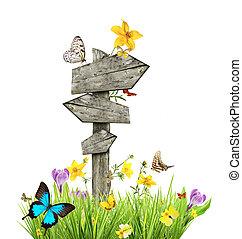 Auf der Wiese mit Schmetterlingen, Frühlingskonzept.