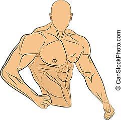 Aufblasbare Muskelmann Vektorzeichnung.