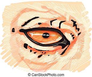 auge, leopard, abbildung, hand, vektor, gezeichnet