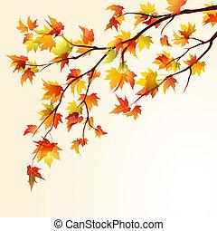 Autumn Ahornzweig