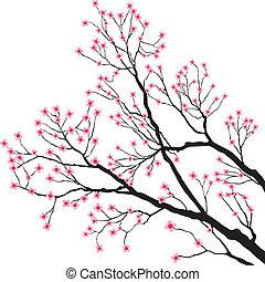 Bäume Äste mit rosa Blumen
