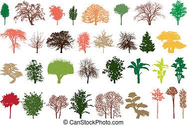 Bäume, Farbe.