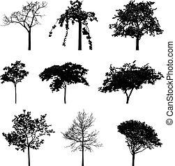 Bäume rutschen