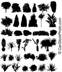 Bäume und Schrubs-Silhouette