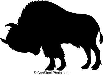 büffel, ansicht, seite