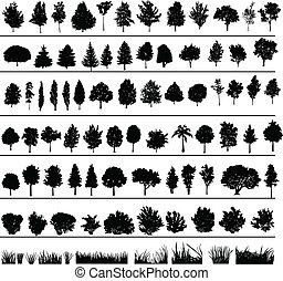 büsche, bäume, gras