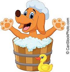 baden, hund, karikatur, bad