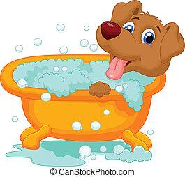 baden, hund, karikatur, zeit