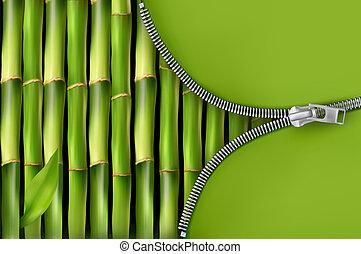 Bambus Hintergrund mit offenem Reißverschluss
