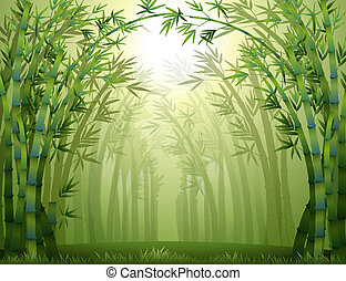 Bambusbäume im Wald