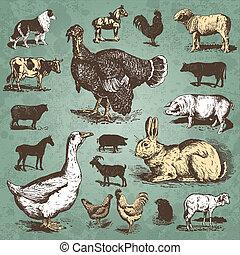 Bauerntier-Sammlung (Vektor)